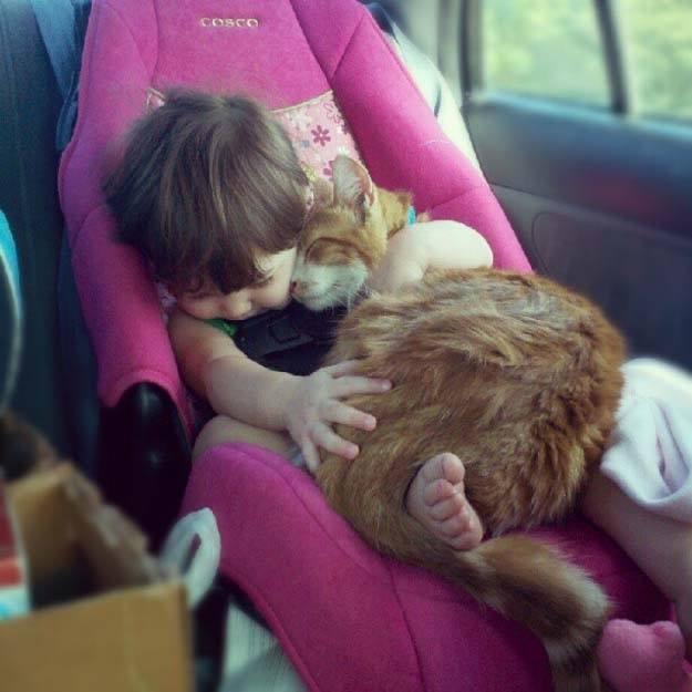Câlin entre un bébé et un chat