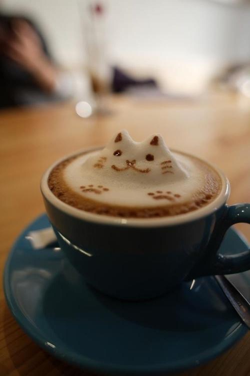 Latte art sur café avec une tête de chat