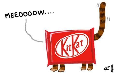 Danger du chocolat pour les chats