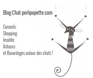 pave300-chat-perlipopette