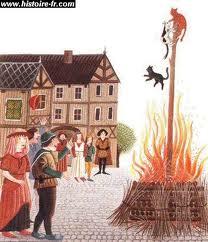 Chats brûlés vifs